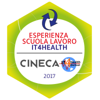 Work experience in school-time: IT4Health - Badge - Badge Wiki